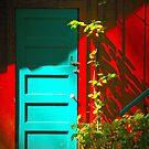 Blue Door in Shadow by Barbara  Brown