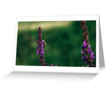 Bee Pollinating Flower Greeting Card