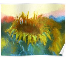 Sunflower Glow  Poster