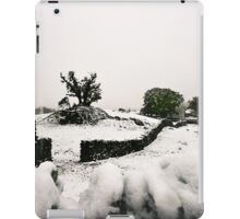 Broken Snow Tree iPad Case/Skin