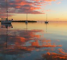 pink sunrise by Aileen Foust