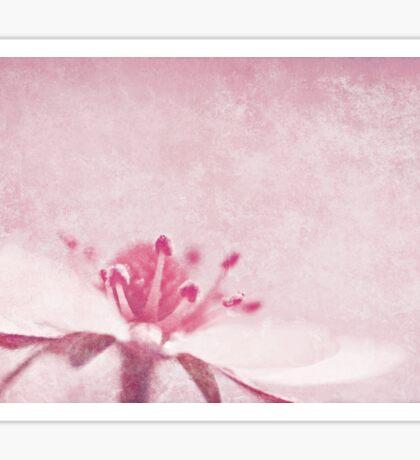 Strawberry Pink Sticker