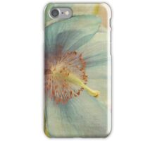 Early summer iPhone Case/Skin