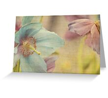 Early summer Greeting Card