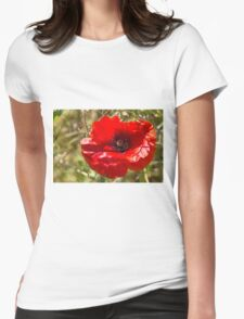 poppies in the field Womens Fitted T-Shirt
