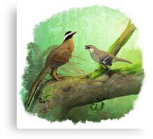 Aurornis and Eosinopteryx fight! Canvas Print