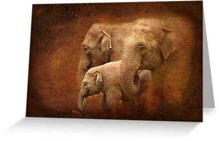 Three generations by steppeland