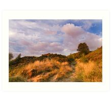 Norland moor at sunset Art Print