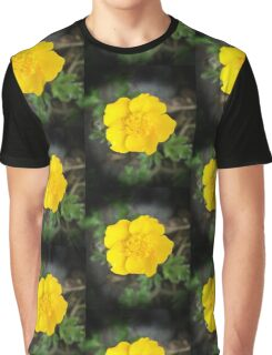 Summer on a Stalk, Buttercup Beauty Graphic T-Shirt