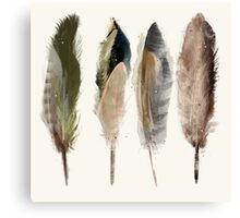 native earth feathers Canvas Print