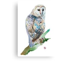 Beautiful Owl  Canvas Print