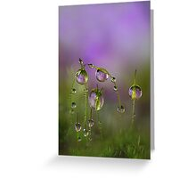 Lilac moss Greeting Card