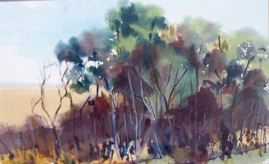 Merging colours - trees - along the Billabong Pyalong Vic Australia by Margaret Morgan (Watkins)