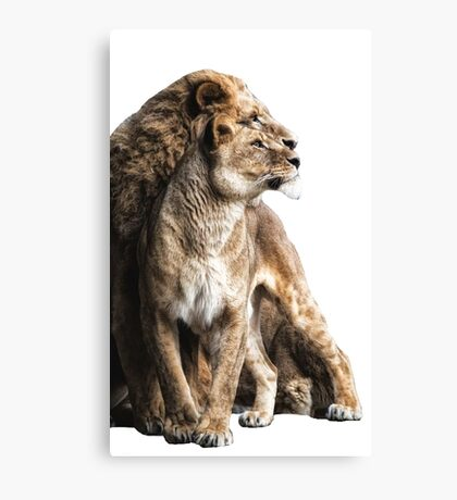 Loyalty Canvas Print
