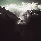 Prolepsis by Richard Davis