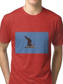 Curlew Season Tri-blend T-Shirt