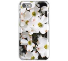 Dogwood Blooms iPhone Case/Skin