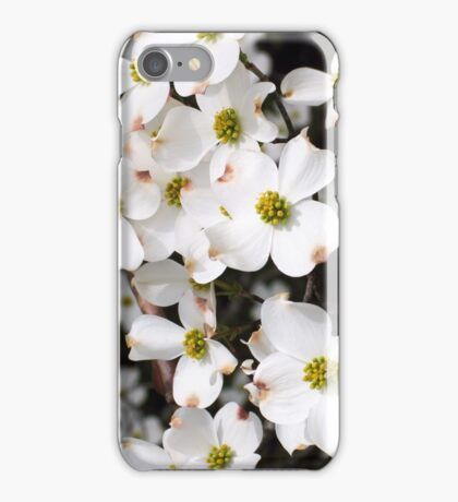 Dogwood Blooms iPhone Case/Skin