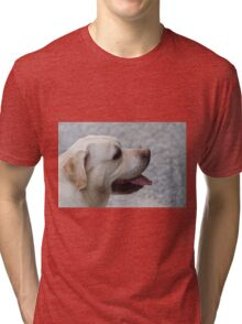 cute dog Tri-blend T-Shirt