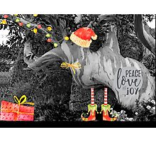 Peace, Love & Joy in Nature Photographic Print
