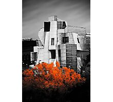autumn at the Weisman Photographic Print