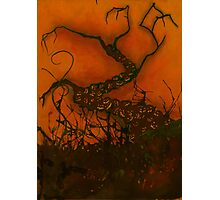 Spooky Halloween Tree Photographic Print