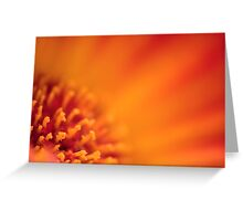 Too Close to the Sun Greeting Card