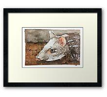 Watercolor Tapir Portrait Framed Print