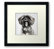Lhasa Apso Lovers Framed Print
