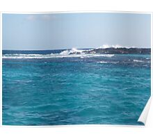 Coral Reef Breakers Poster