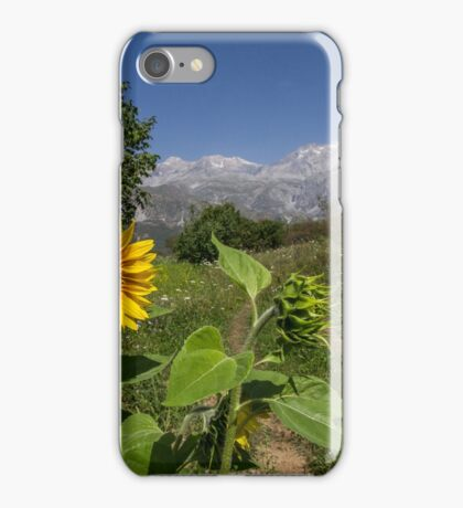 Sunflowers in the Mountains of Kyrgyzstan iPhone Case/Skin