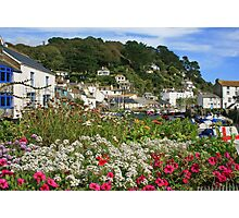 Polperro In Bloom Photographic Print