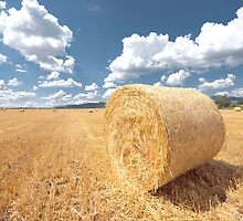 Hay bails on the field under blue sky by iWorkAlone