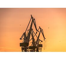 Industrial cargo cranes in the dock Photographic Print