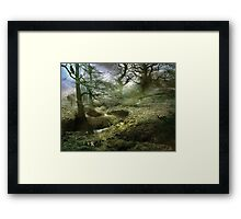 A Madness in Avalon Framed Print