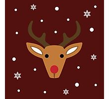 Rudolph the reindeer Photographic Print