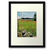 Tranquil Lanscape Framed Print