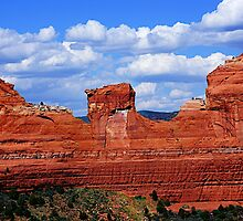 Red rock of Sedona by Nancy Richard