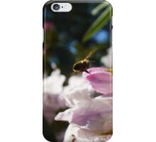 The Early Days of Spring iPhone Case/Skin
