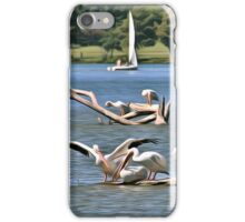 Pelicans & Sail Boat iPhone Case/Skin