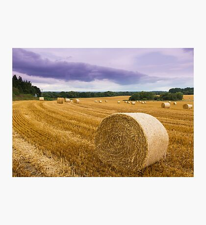Straw bales Photographic Print