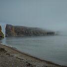 Foggy morning at Percé Peninsula in Gaspesie  by 29Breizh33