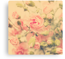 carnation pink Canvas Print