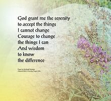 Serenity Prayer Boulder and Butterfly Bush by serenitygifts