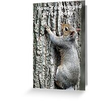 Have You Hugged a Tree Today? Greeting Card