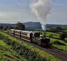 Lynton & Barnstaple by Martin Creese