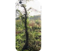Autumn Beginning iPhone Case/Skin