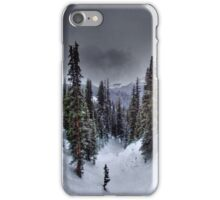 Old Man Winter iPhone Case/Skin