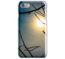 Sun rays through the trees iPhone Case/Skin