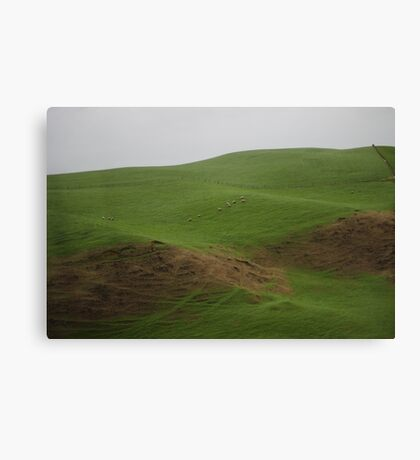 On The Way To Hobbiton Canvas Print
